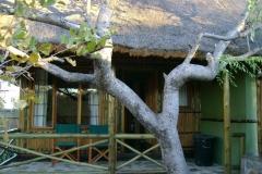 Moholoholo bungalow patio-Scott CD