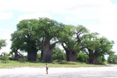 Botswana, 2010, Ids $ Nicky 379